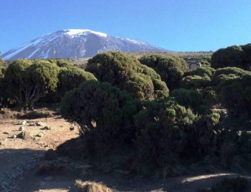 Mt. Kilimanjaro Climbing Tips